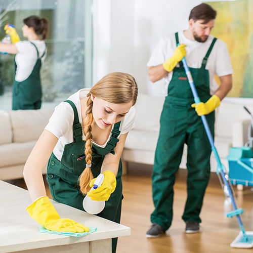 Pontual Home Maintenance Services
